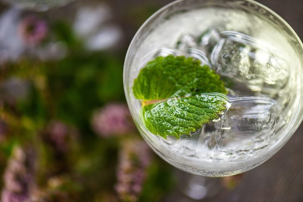gin and tonic with applemint garnish - varieties of mint